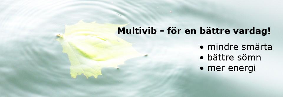 multivibbild-copy
